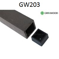 GW203